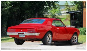 A Red Pontiac Firebird by TheMan268