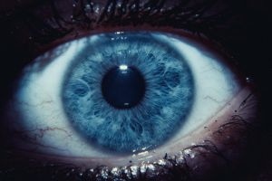 blue eye by klet4ataya