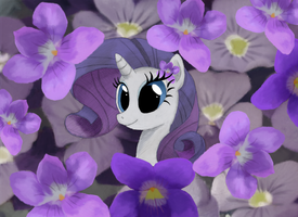 Violet Rarity by Hewison