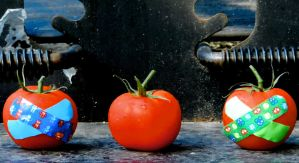 Fight Club Tomatoes by machete-genie