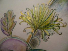 GREEN  AND GOLD CHRYSTHANEMUM by GeaAusten
