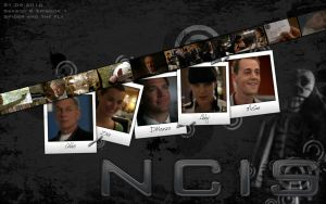 NCIS_8x01 by Nikky81