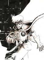 Carrie Kelly Robin by RADMANRB