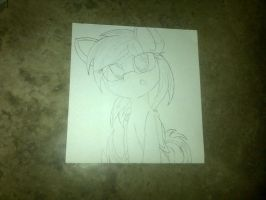 Img-20141102-01461 by The-mega-Sweet-Kitty