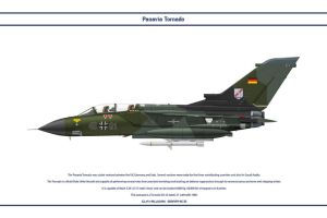 Tornado Germany JaboG 31 1 by WS-Clave