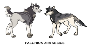 Falchion and Kesius Ref Sheet by HailDawn