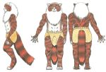 Tyger Clothing Reference by Slipping-Star