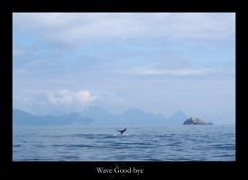 Wave Goodbye by rcoots