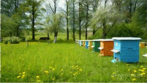 Spring, bees and field watercolor by MyWebNet