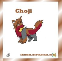 Choji cat by Shizuri