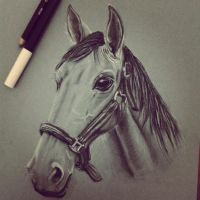 horse by glnhl