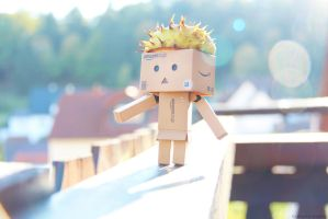 Stylish Danbo by KatharinaKuebler