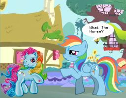 Rainbow Dash - What the? by SylvesterKittyCat