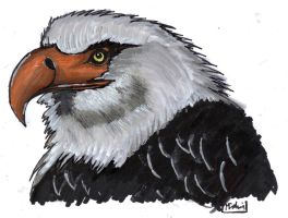"""""""The Hawk Is Howling"""" by YouCannotFalter"""