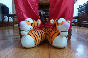Tigger slippers #2, front by ExileLink