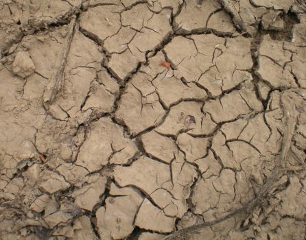 Stock Texture - Cracked Earth by rockgem