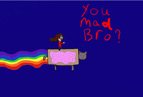 IM RIDING NYAN CAT 8D by WolvezRule