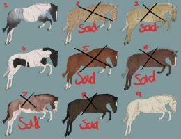 Natural Horse Adopts -FOR SALE- by DAS-Designs