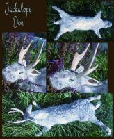 Silver Jackalope Doe by Tricksters-Taxidermy