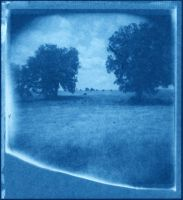 cyanotype: imperfect world by futurowoman