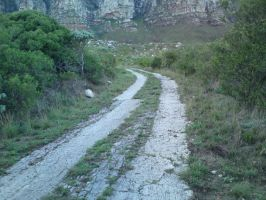 Hiking in South Africa 5 by ask-South-Africa