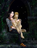 Sirius x Remus by fablespinner