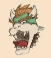 Bowser by mtowreck