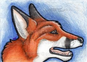 ATC: Red Fox 2013 by AirRaiser