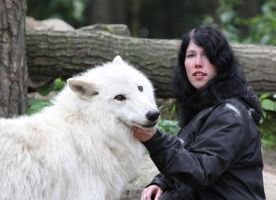 With wolves by Tribolonotus