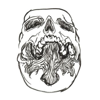 Worms Eye View Skull by heidel