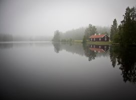 in the mist by Sjodin