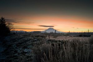 Rainier by jeruley