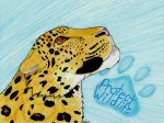 Protect Wildlife:The Amur Leopard by Hyena27