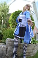 Armed Alice 7 by shelle-chii