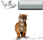 Tiger Layout by Paigegirl