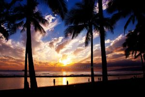 Waikiki Sunset 3 by palina32