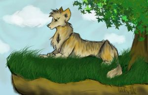Wolf Upon a Cliff by wolfylittleartist
