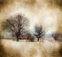 Winter by Chris-Lamprianidis