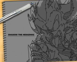 Shadow Wall, SonicChannel ver. by Mayasacha