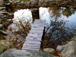 Reflection On An Autumn Pond by AverageSmalltownGirl