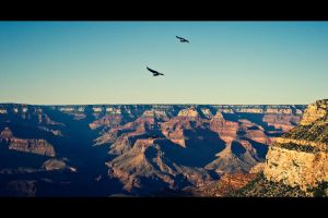 the grand canyon by T-Sandgren