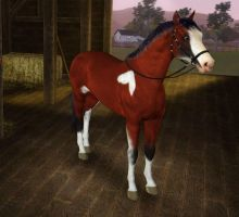 Sims 3 Sassy by MagicWindsStables