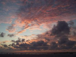 Sunset in Florida by dman24993