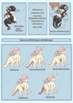 Fluffroons Guide 1 - Intro/Body Types by starlitcarnival