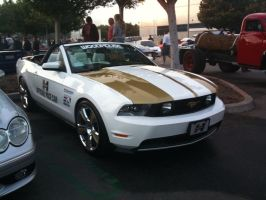 Hurst Convertible 2010 Mustang by BloodThirstyWolfGirl