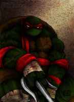 Raphael from TMNT by PiccoToxin