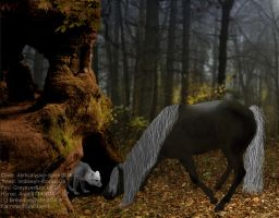 The Lord Of The Woods by Fiamma-Studios
