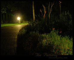 The Pathway by Dhuaine