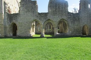 Netley Abbey69 by Birdsatalcatraz