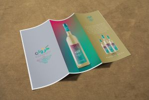 Karawan Brochure by hamoud